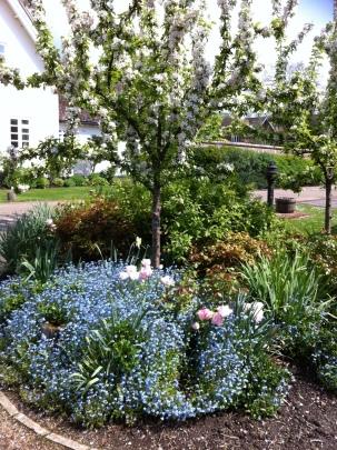 large town garden